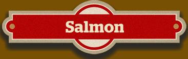Promotions- salmon